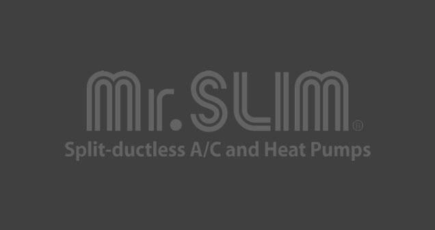 Mr.Slim