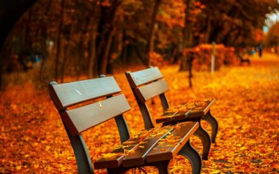 Effective Energy Saving Tips: Fall and Winter
